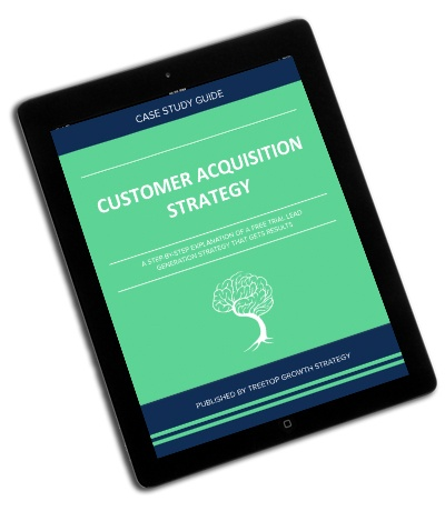 Customer-acquisition-strategy-treetop-growth-strategy.jpg