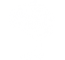 Treetop Growth Strategy