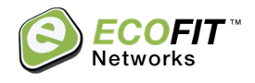 ecofit-networks-treetop-growth-strategy.png